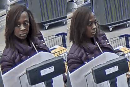 Chesapeake stolen credit card suspect