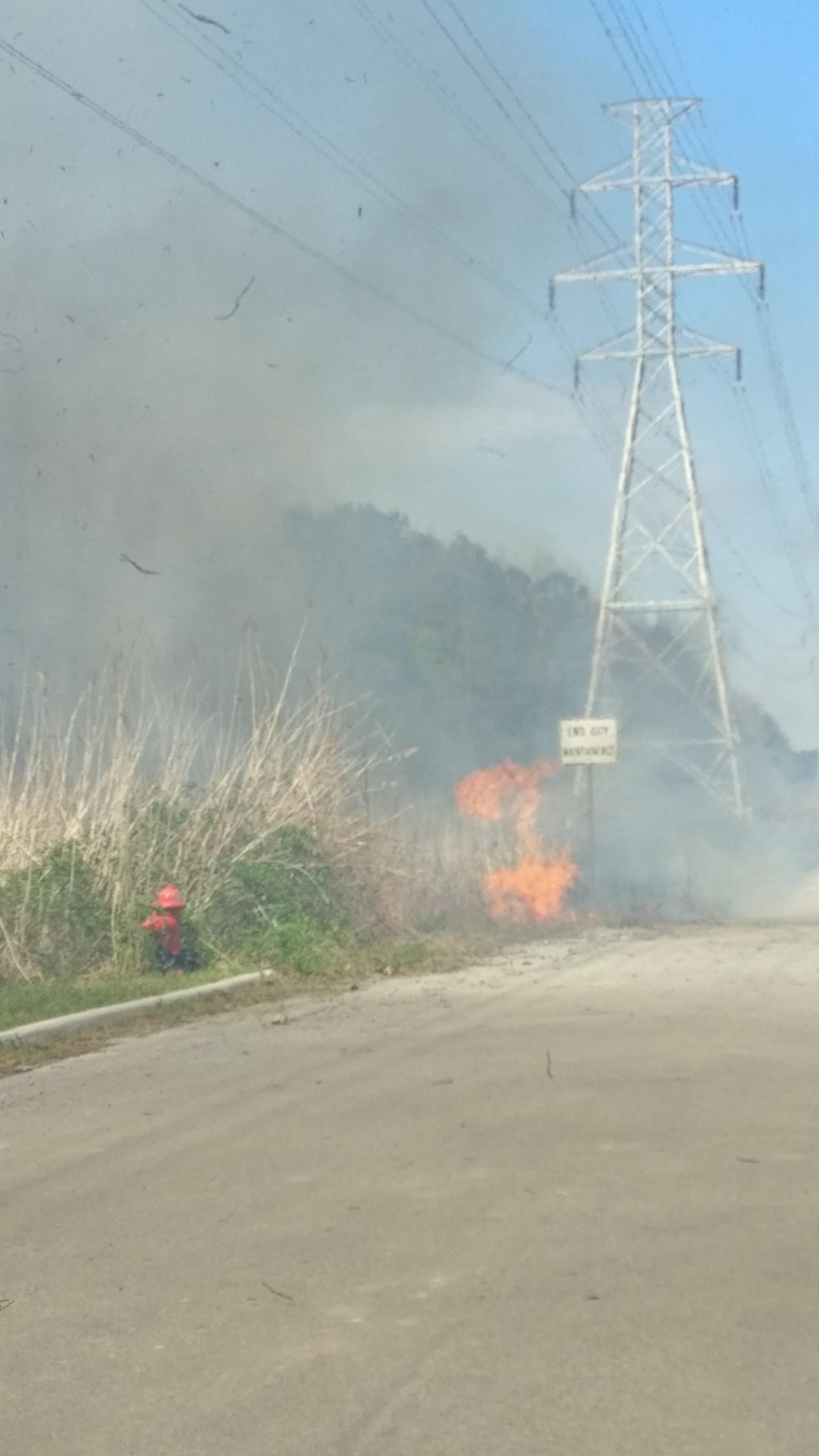 Chesapeake brush fire Military Highway