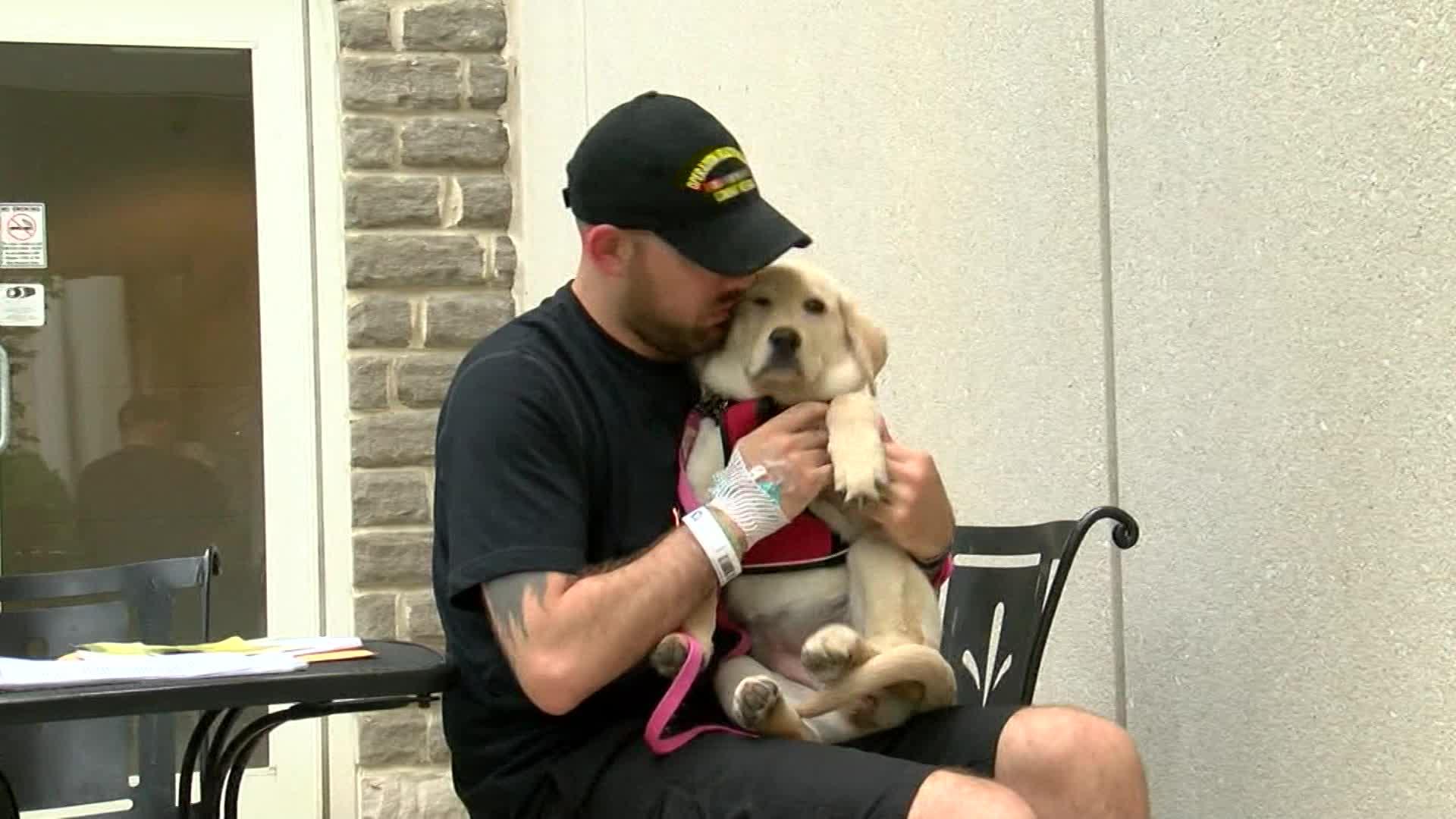 vet and dog_1526744872719.jpg-873772846.jpg
