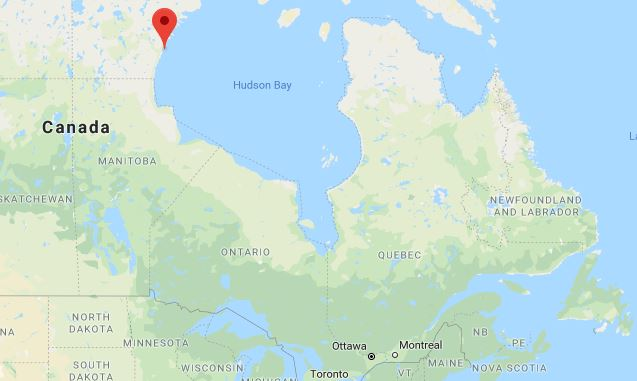 CanadaBearAttack_1530791609303.JPG