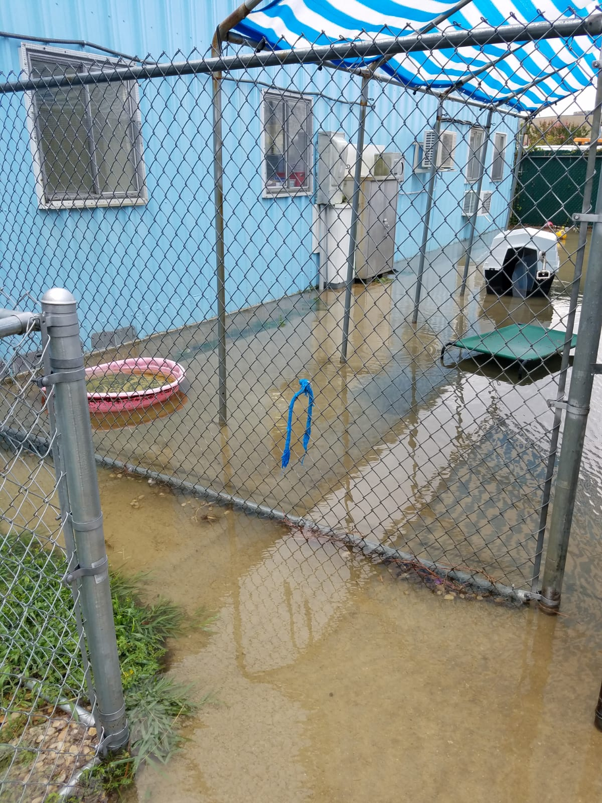 Outer Banks SPCA Flooding_1532540794309.jpg