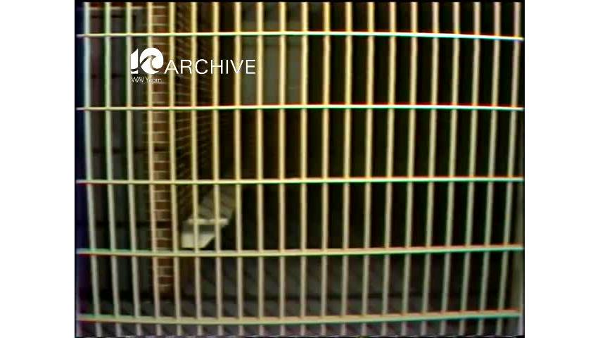 WAVY Archive: 1981 Jail