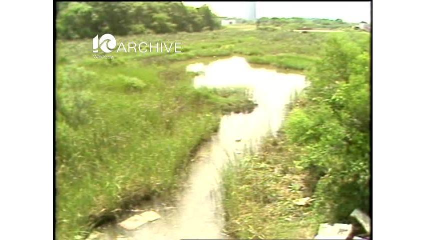 WAVY Archive: 1981 Virginia Beach Neptune Gardens Proposal