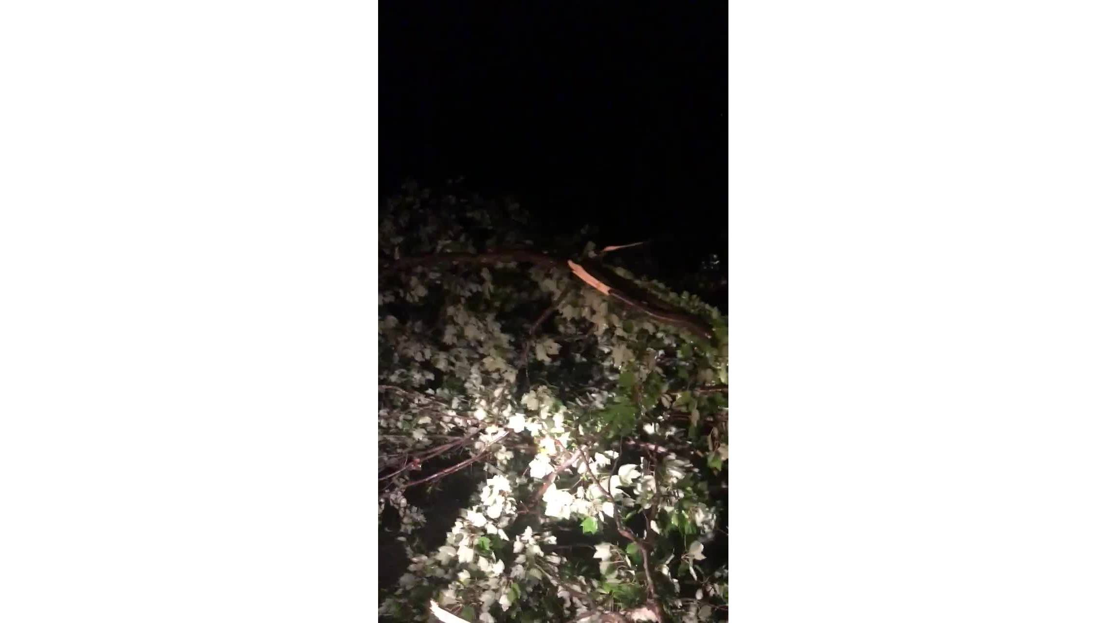 Storm_damage_from_Michael_in_Kristiansan_0_20181012010419