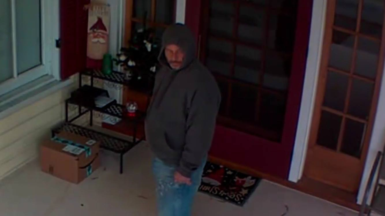 franklin pkg thief suspect 2_1543419136698.jpg.jpg