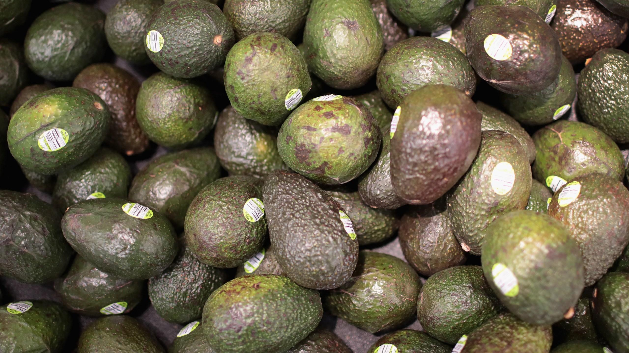 Avocados_1545678811980