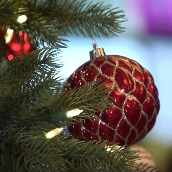Seasonal_Sniffles__The_Christmas_Tree_Sy_3_20181211184858