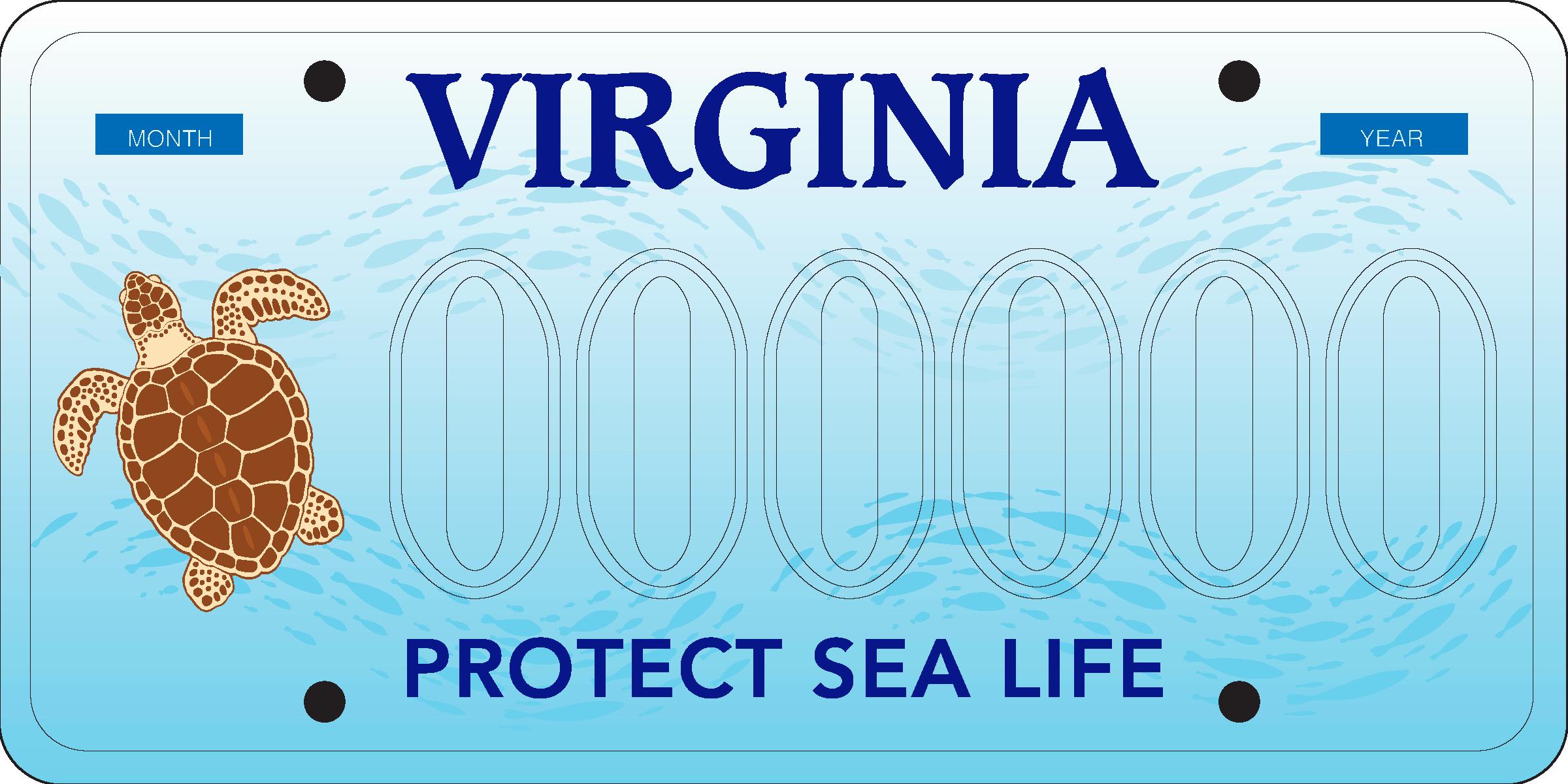 Virginia Aquarium Protect Sea Life license plate
