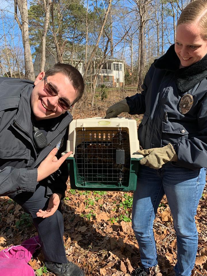 WBG Owl Rescue_1550023552785.jpg.jpg