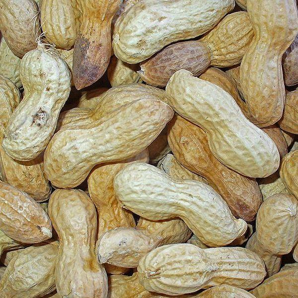 peanuts_107409
