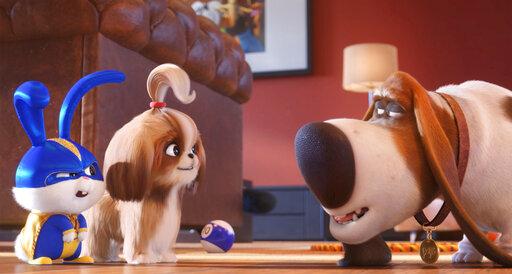 Film Title: The Secret Life of Pets 2