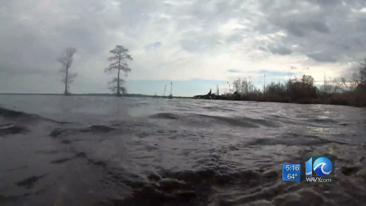 Living River Trust donates 500 acres to Great Dismal Swamp