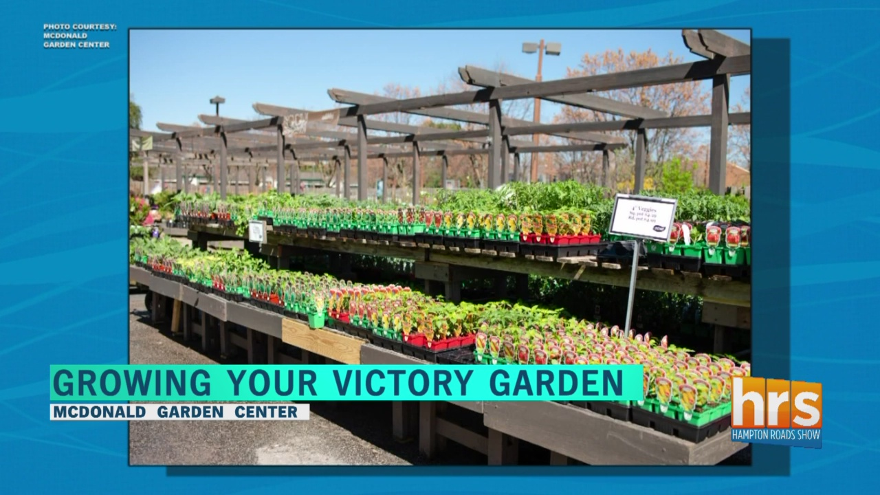 How To Make A Victory Garden And Be