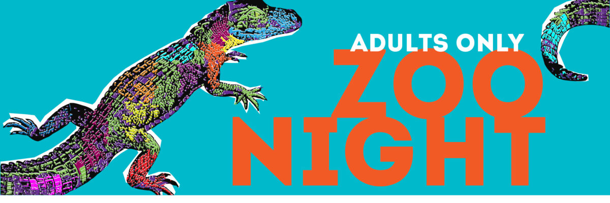 wavy.com - Julius Ayo - Virginia Zoo invites visitors for exclusive 'adults only' night with beer, wine available for purchase