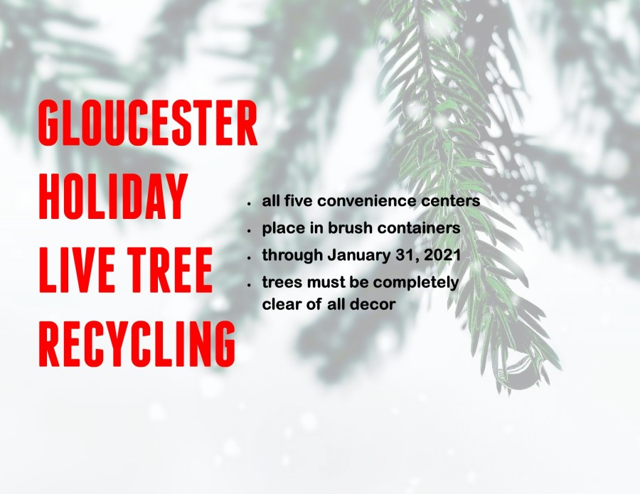 When Is Hampton City Christmas Holiday Trash Pickup For 2021 Guide To Christmas Tree Disposal In Hampton Roads Wavy Com