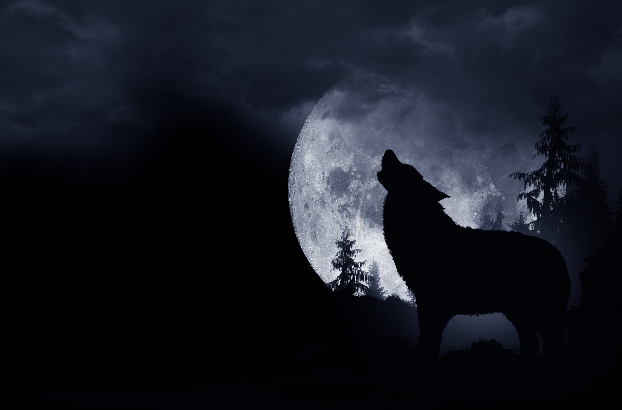 The 'Wolf Moon' will rise in the sky this week – here's how you can best  view it | WAVY.com